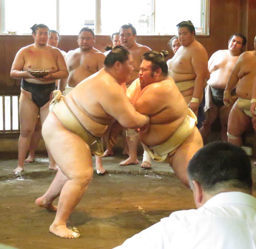 https://www.nikkansports.com/battle/sumo/news/img/201909030000585-w500_0.jpg