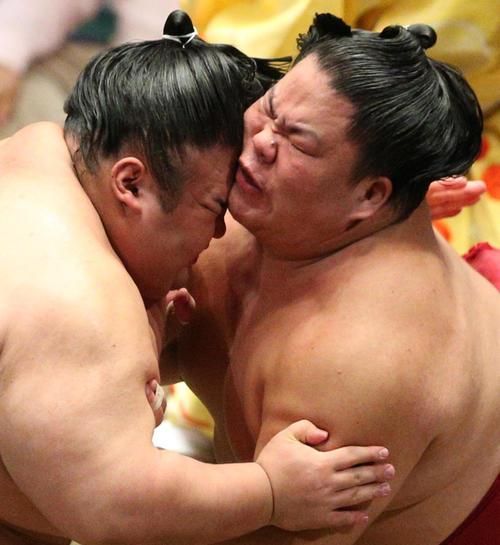 大栄翔(右)と激しくぶつかる貴景勝(撮影・中島郁夫)