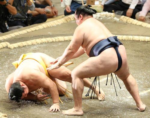 遠藤(左)をはたき込みで破る鶴竜(撮影・中島郁夫)