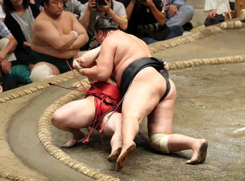 炎鵬(左)を浴びせ倒しで破る東龍(撮影・鈴木正人)
