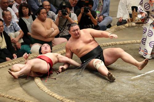 炎鵬(左)を浴びせ倒しで破った東龍(撮影・鈴木正人)