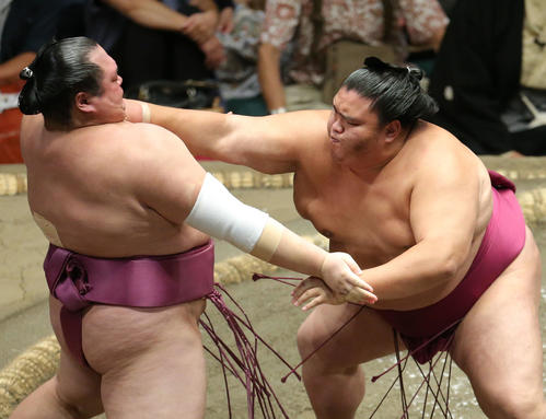 https://www.nikkansports.com/battle/sumo/news/img/201909160000823-w500_1.jpg