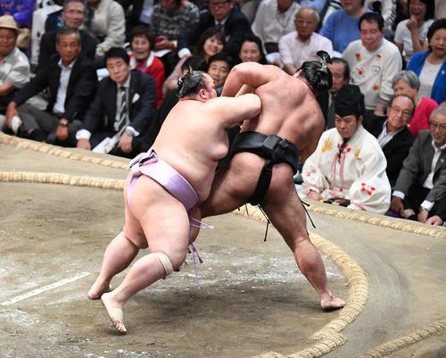 琴勇輝(左)は送り出しで松鳳山を下す(撮影・加藤諒)