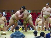 高安「痛みない」左肘負傷で秋場所全休も復活へ精力 - 大相撲 : 日刊スポーツ