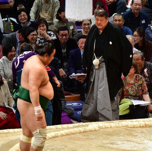 佐田の海(左)を阿武咲が寄り切りで破るも錦戸親方が下敷きとなる(撮影・清水貴仁)