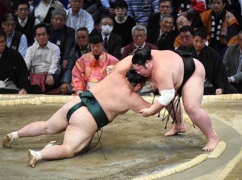 豊山(左)をつき落としで下す剣翔(撮影・今浪浩三)