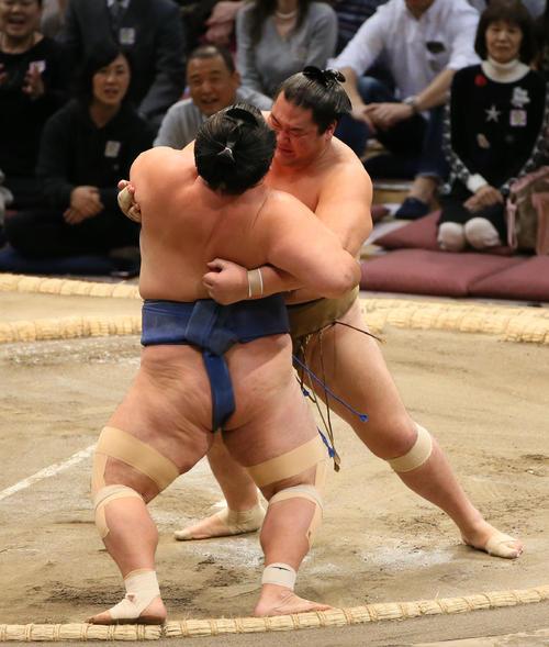 琴奨菊(右手前)を寄り切りで破る輝(撮影・栗木一考)