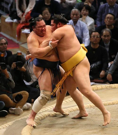 北勝富士(左)を押し出しで破る遠藤(撮影・栗木一考)