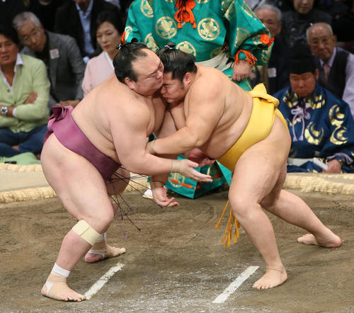 宝富士(左)を寄り切りで破る遠藤(撮影・栗木一考)