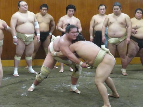 関取復帰の照ノ富士、黒まわし捨て出稽古で汗流す - 大相撲写真 ...