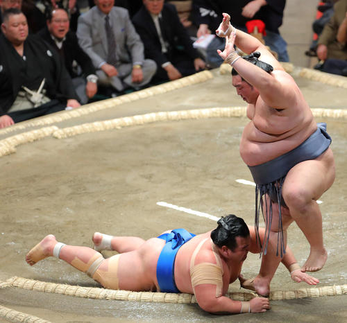 琴奨菊(左)を突き落としで破る徳勝龍(撮影・河田真司)