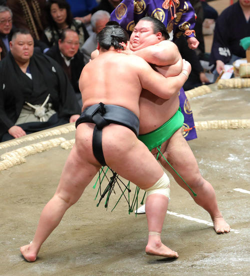 東龍(左)を攻める千代丸(撮影・河田真司)