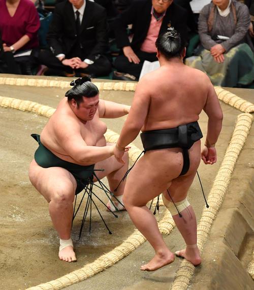 豊山(左)は東龍を押し出しで破る(撮影・柴田隆二)