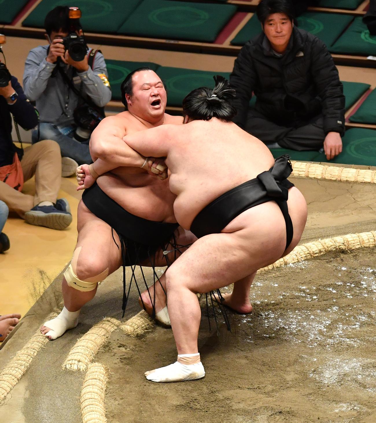 豊ノ島(左)は千代鳳に寄り倒しで敗れる(撮影・柴田隆二)