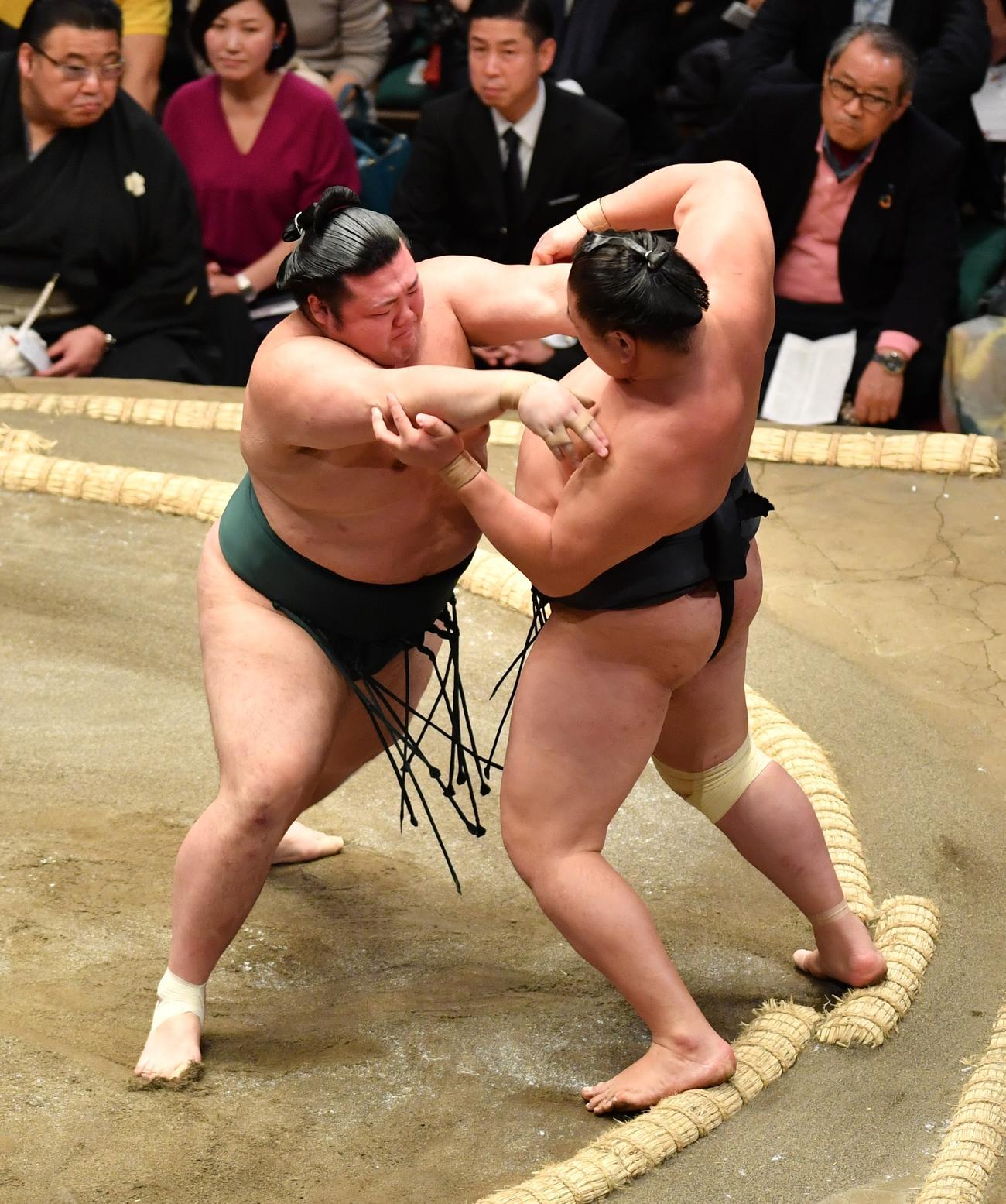 豊山(左)は、東龍を押し出しで破り8勝目