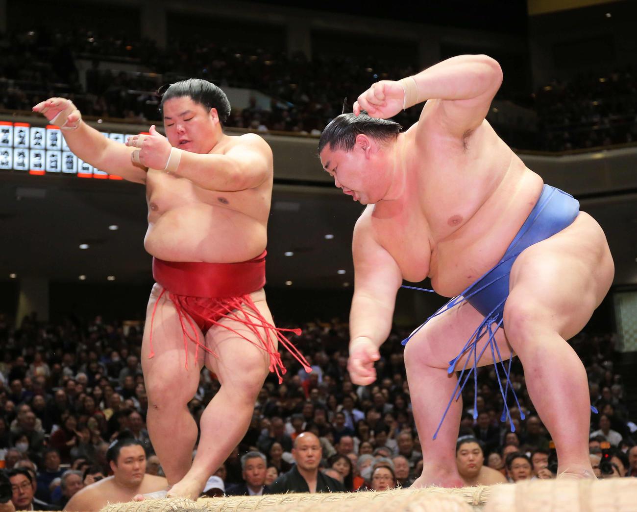 大栄翔(左)を押し出しで破る正代(撮影・河田真司)