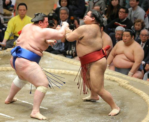 碧山(左)の攻めに耐える高安。右は徳勝龍(撮影・河田真司)