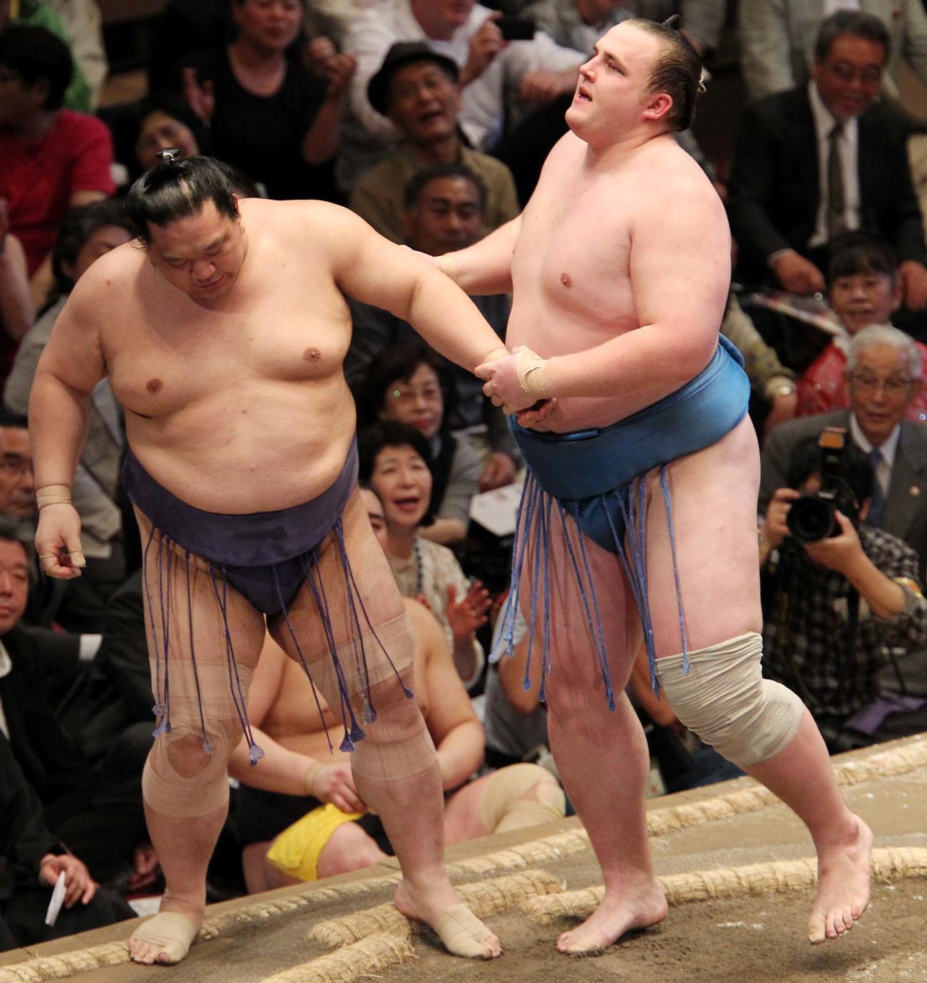 大相撲夏場所9日目 魁皇(左)を押し出した把瑠都(10年05月17日)