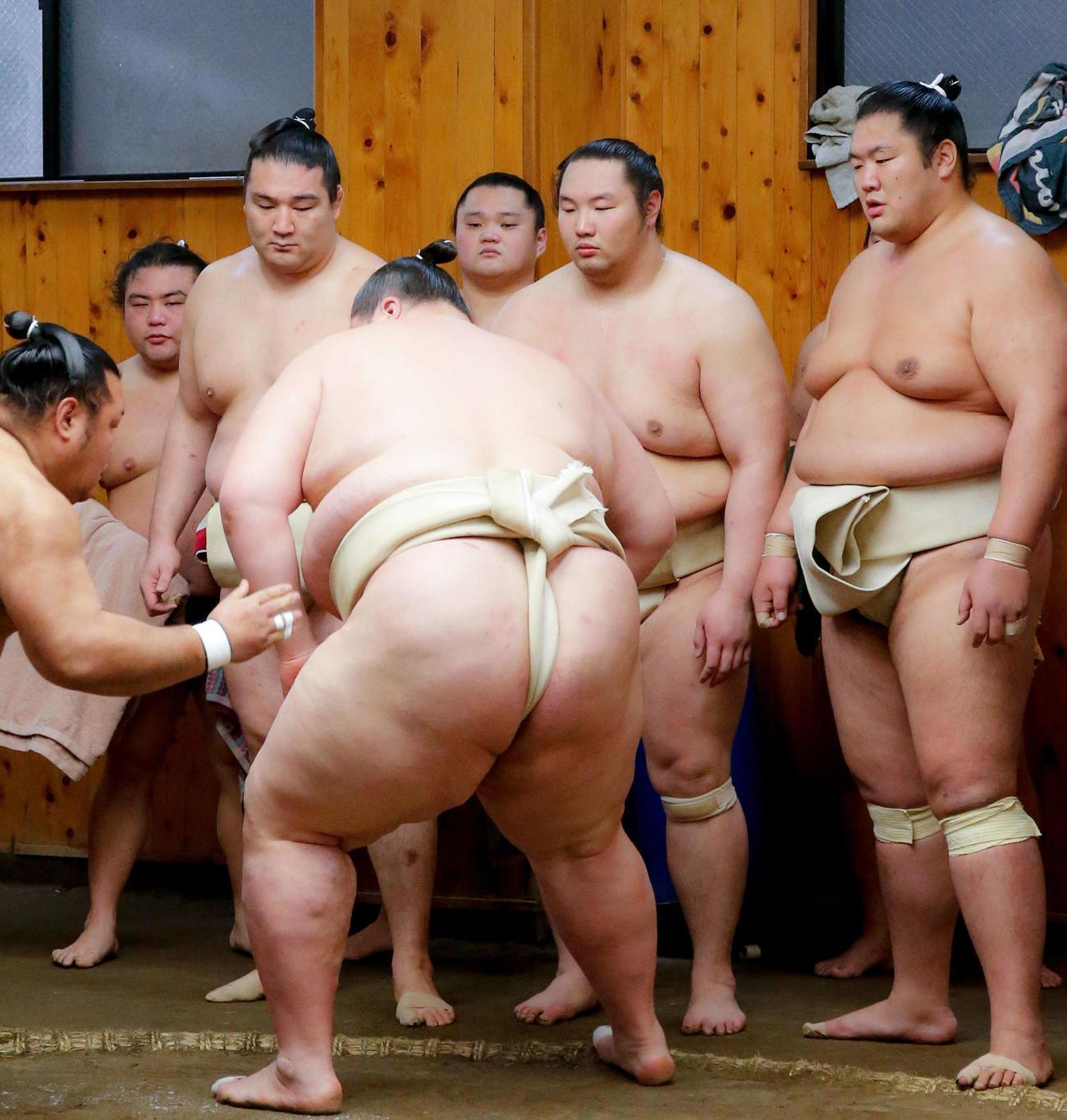 左から勝武士さん、竜電、大乗、白鷹山、輝(2019年1月9日撮影)