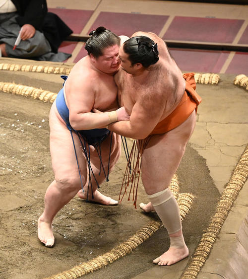 逸ノ城(左)は魁聖を寄り切りで破る(撮影・山崎安昭)
