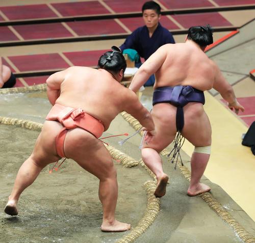 阿武咲(右)を押し出しで破る千代大龍(撮影・河田真司)