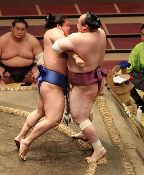 宝富士(右)を寄り切りで破る若隆景(撮影・鈴木正人)