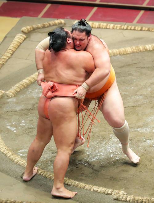 千代大龍(左)を寄り切りで破る魁聖(撮影・河田真司)