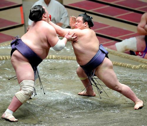 照ノ富士(左)を攻める阿武咲(撮影・河田真司)