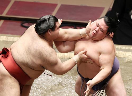 アブ咲(右)を激しく攻撃考案(撮影・鈴木雅人)