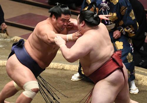 隆の勝利(右)を攻撃スタント用(撮影・滝沢哲郎)