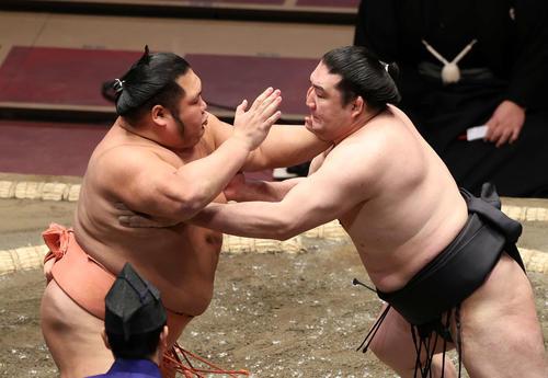 千代大龍(左)と攻撃互いに用電源(撮影・鈴木雅人)