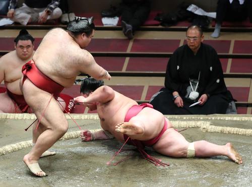 大栄翔(右)をはたき込みで破る高安(撮影・河田真司)