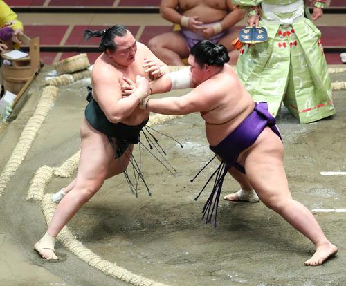 千代翔馬(左)を押し出しで破る明生(撮影・河田真司)