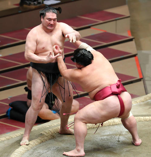 竜電(左)を押し出しで破る大栄翔(撮影・河田真司)