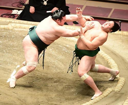 豊山(左)は佐田の海を突き出しで破る(撮影・小沢裕)