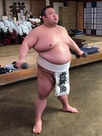 貴景勝 綱とりへ「あまり深く考えず、ノビノビと」 - 大相撲 : 日刊スポーツ