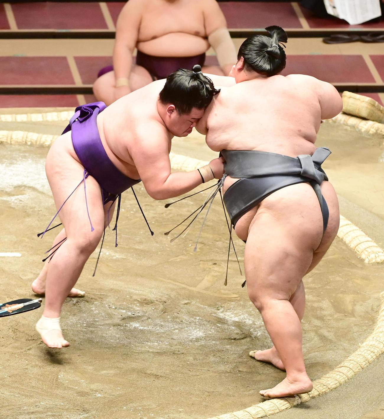 徳勝龍(右)を寄り切りで破る明生(撮影・小沢裕)