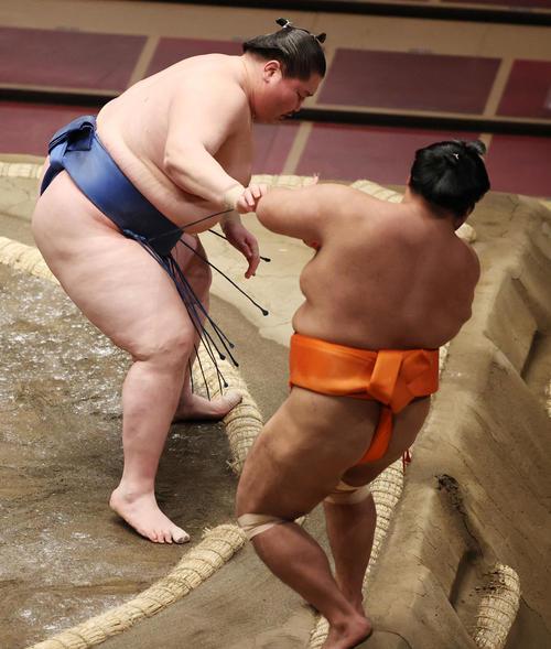 志摩ノ海(右)を押し出しで破る逸ノ城(撮影・野上伸悟)