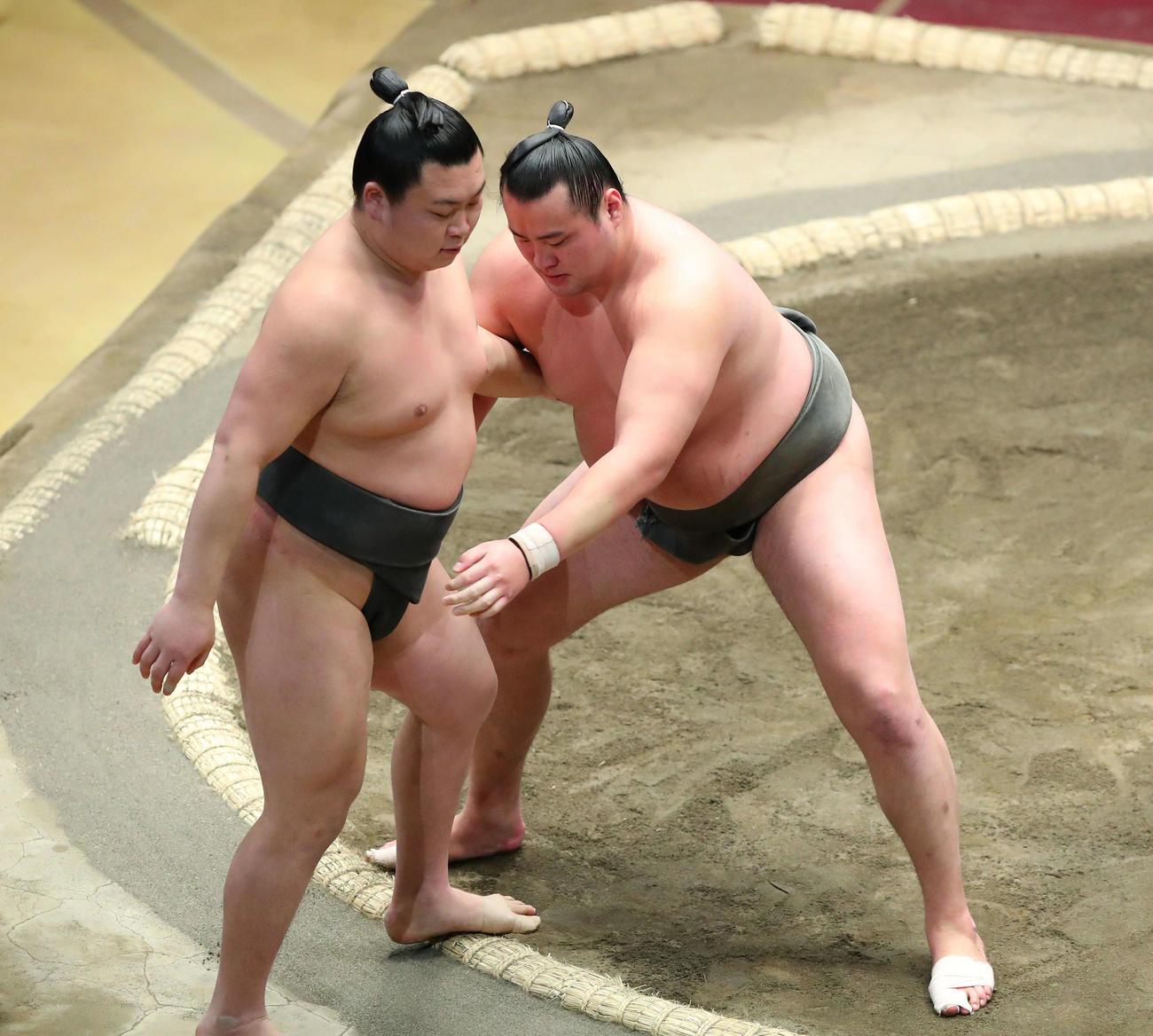 寺沢(左)を寄り切りで破る北の若(撮影・河田真司)