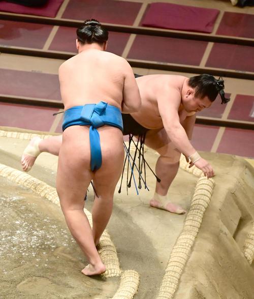 豊昇龍(左)を照強を突き落としで破る(撮影・小沢裕)