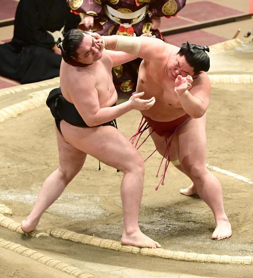 大栄翔(右)は竜電を押し出しで破る(撮影・小沢裕)