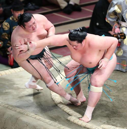 豊山(左)を押し倒しで破る琴ノ若(撮影・河田真司)