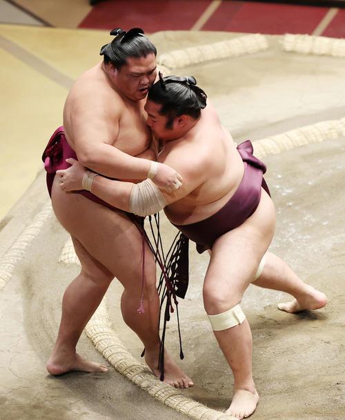 翠富士(左)を寄りきりで破る遠藤(撮影・鈴木正人)