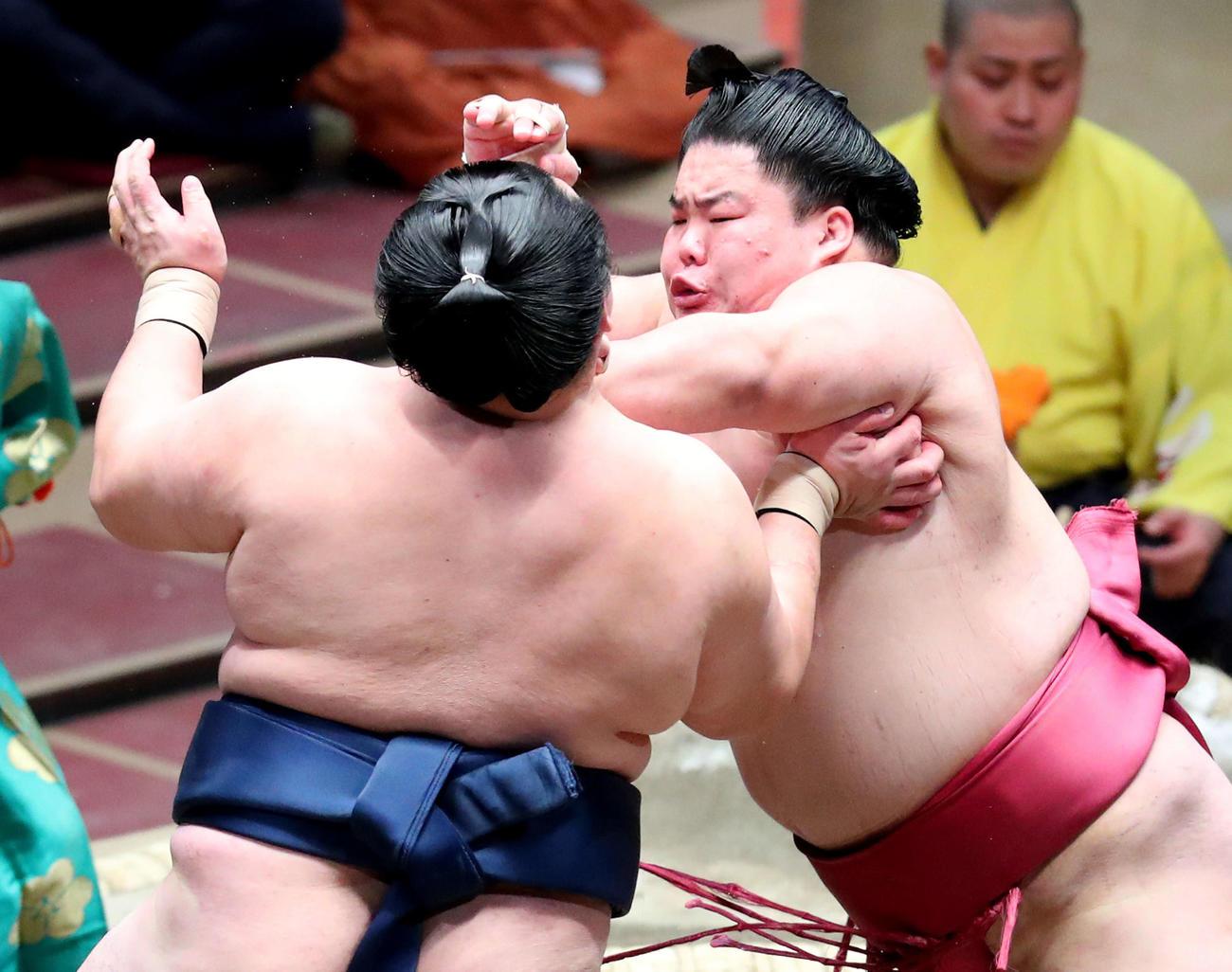玉鷲(左)を勢いよく攻める大栄翔(撮影・河田真司)
