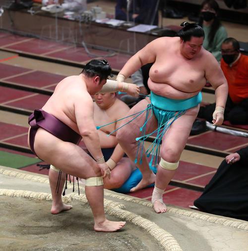 琴ノ若(右)を寄り切りで破る遠藤(撮影・河田真司)
