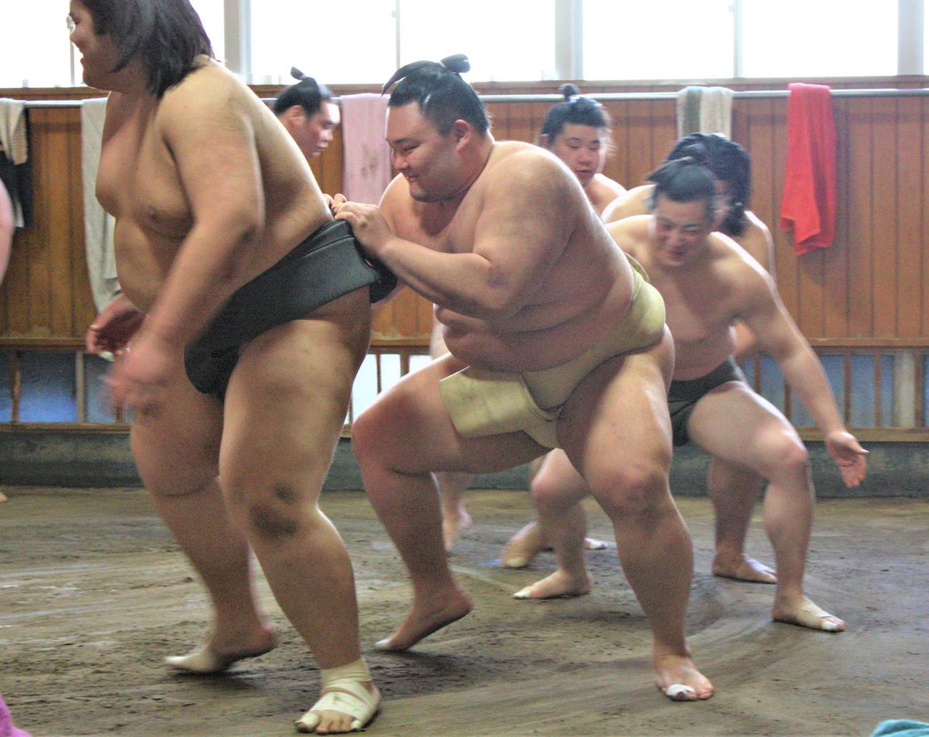若い衆のムカデに加わる朝乃山(左から2番目)(代表撮影)(代表撮影)