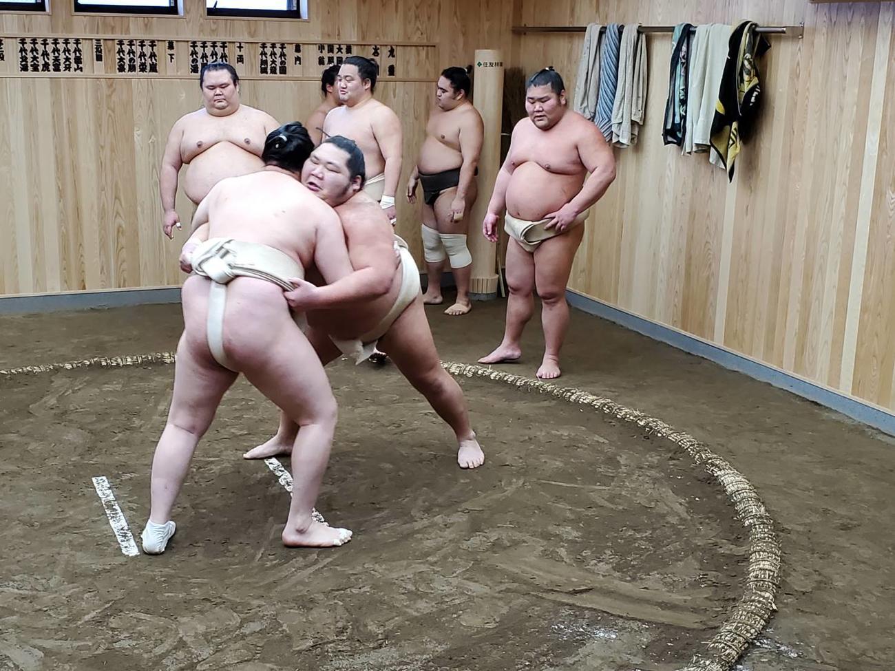 東京都葛飾区奥戸の新拠点で稽古を行う九重部屋の力士(日本相撲協会提供)
