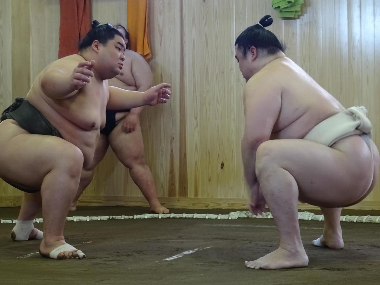 東京都板橋区の新拠点で稽古をする隆の勝(右)と胸を出す太一山(代表撮影)
