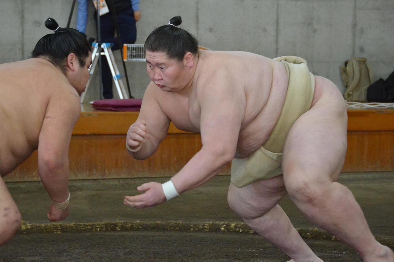 合同稽古で関取衆との申し合いに加わる逸ノ城(右)(代表撮影)
