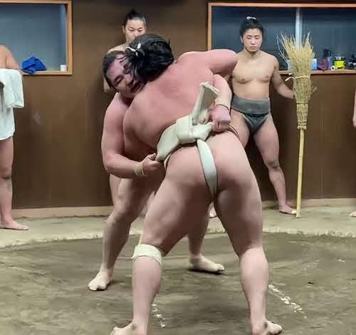 霧馬山と稽古をする鶴竜(日本相撲協会提供)